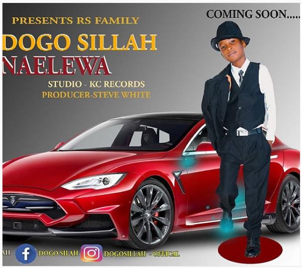 DOWNLOAD MP3: Dogo Sillah – Naelewa