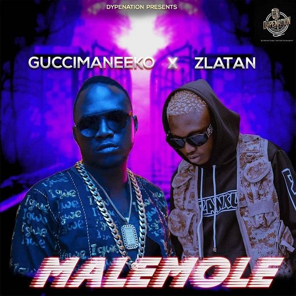 DOWNLOAD MP3: Guccimaneeko – Malemole Ft. Zlatan