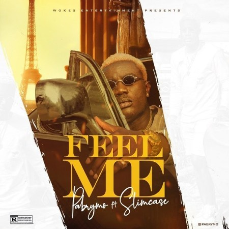 DOWNLOAD MP3: PaBrymo – Feel Me Ft. Slimcase