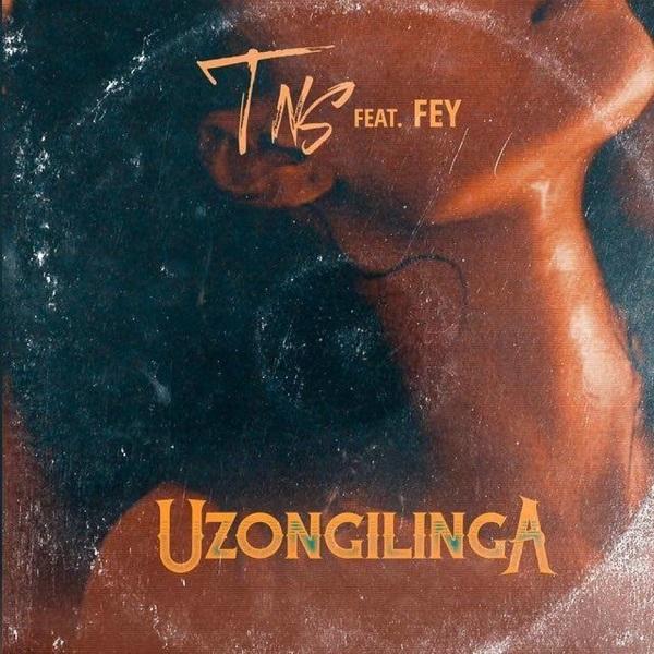 DOWNLOAD MP3: TNS – Uzongilinga Ft. Fey
