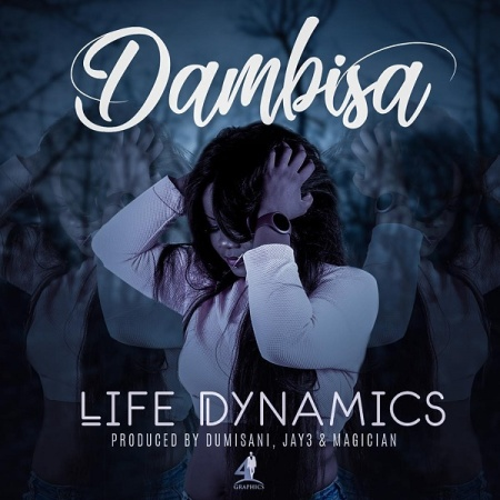 DOWNLOAD MP3: Dambisa – Life Dynamics