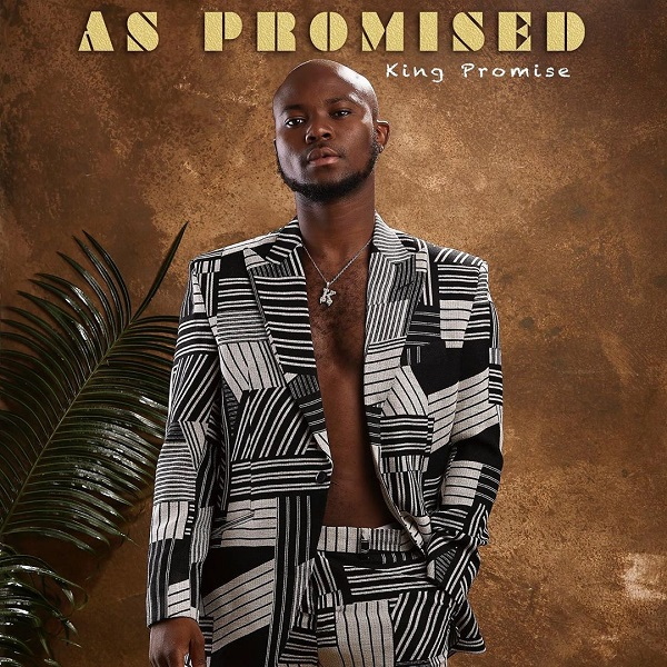 DOWNLOAD MP3: King Promise – My Lady
